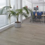 Kitchens Vinyl Flooring (11)