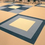 Schools & Nurseries Vinyl Flooring (1)