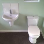 bathroom vinyl tile (2)